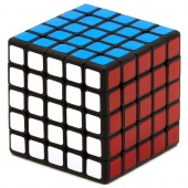 5x5x5 ShengShou Magnetic Mr.M